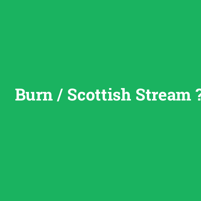 Burn / Scottish Stream, Burn / Scottish Stream nedir ,Burn / Scottish Stream ne demek