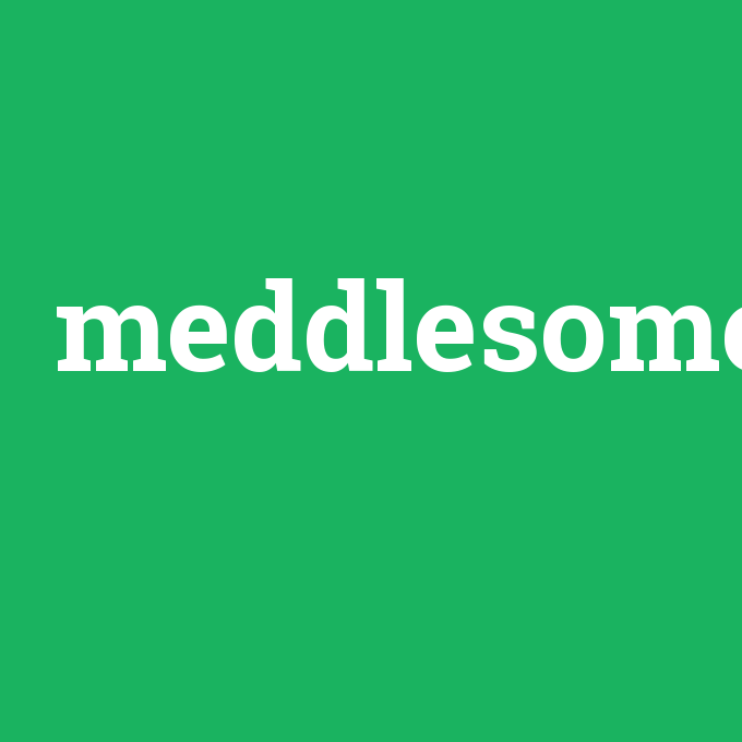meddlesome, meddlesome nedir ,meddlesome ne demek